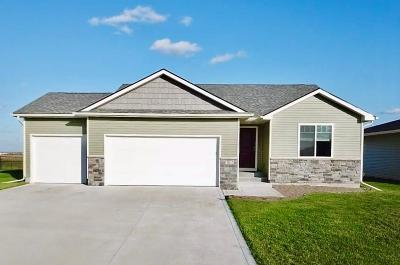 Ankeny Single Family Home For Sale: 1503 NW Abbie Drive