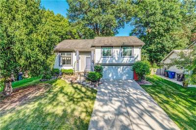 Des Moines Single Family Home For Sale: 3719 SE 19th Street