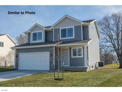 Ankeny Single Family Home For Sale: 2720 NW 25th Street