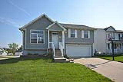 Ankeny Single Family Home For Sale: 3203 SW Olde Ivy Circle