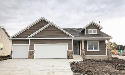 Fort Dodge Single Family Home For Sale: 2303 Williams Drive