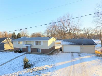 Webster County Single Family Home For Sale: 3009 9th Ave. S.