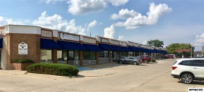 Mason City Commercial For Sale: 642 S Monroe