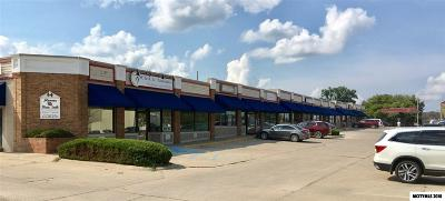 Mason City Commercial For Sale: 630 S Monroe