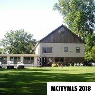 Mason City Commercial For Sale: 15566-A 317th St