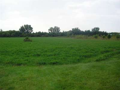 Mason City Land For Sale: Lot 1 S Taft