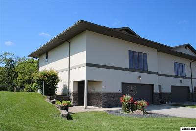 Mason City Single Family Home For Sale: 401 River Bend Dr