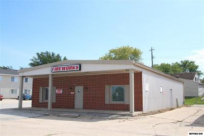 Mason City Commercial For Sale: 153 19th SW