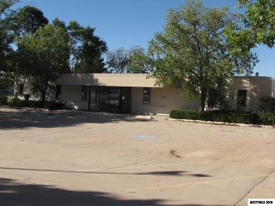 Mason City Commercial For Sale: 1190 Briarstone Dr
