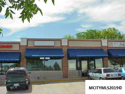 Mason City Commercial For Sale: 636 S Monroe #636