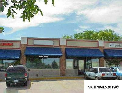 Mason City Commercial For Sale: 642 S Monroe Ave #642
