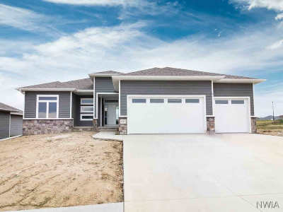 Single Family Home For Sale: 6343 Tiger Dr.