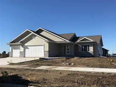 Single Family Home For Sale: 507 Jamie Lane