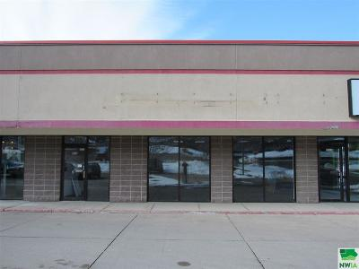 Commercial For Sale: 2515 Hamilton Blvd