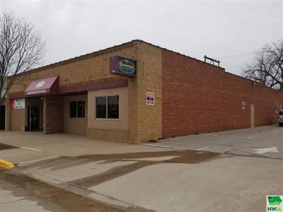 Commercial For Sale: 713-23 Lake Avenue