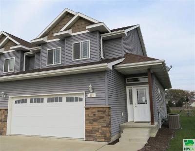 Single Family Home For Sale: 813 Coffie Farm Road