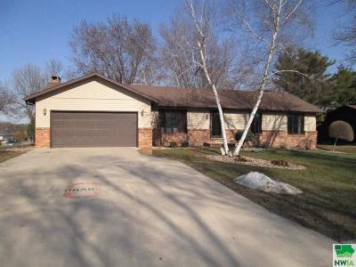 Single Family Home For Sale: 250 N 9th Avenue