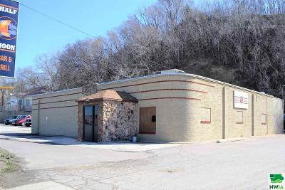 Commercial For Sale: 708 And 714 S Lewis Blvd