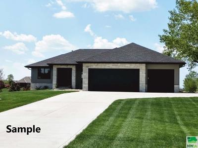 Single Family Home For Sale: 3441 Wanamaker Way