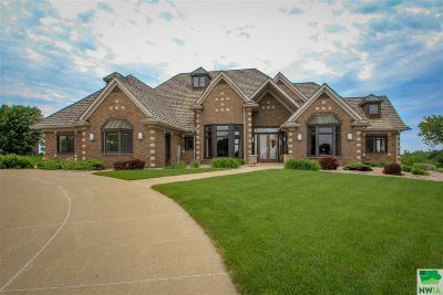 Single Family Home For Sale: 4501 Stoneridge Point