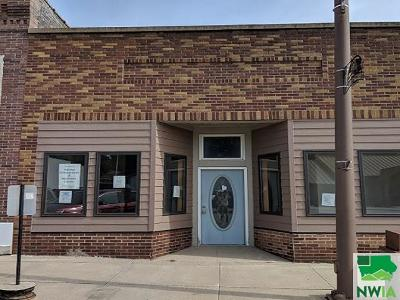 Commercial For Sale: 112 W 2nd St.