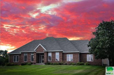 Single Family Home For Sale: 936 Wynstone Dr