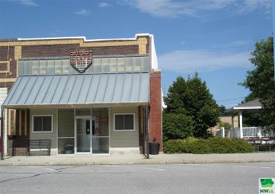 Commercial For Sale: 306 N Main St.