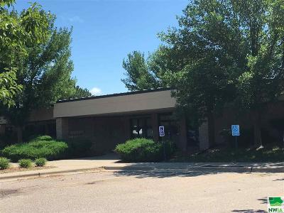 Commercial For Sale: 370 W Anchor Drive