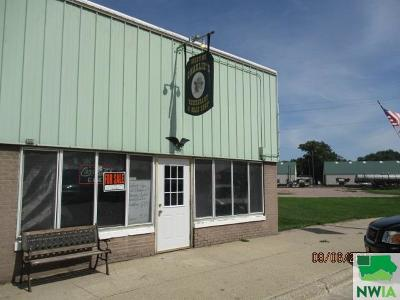 Commercial For Sale: 620 Whittier Street