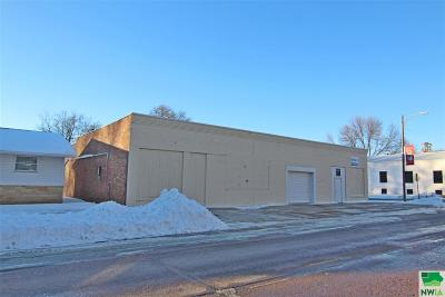 Commercial For Sale: 300 Main Street