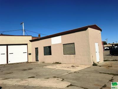 Commercial For Sale: 201 W Railroad Street