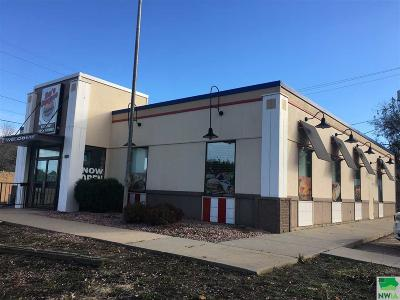Commercial For Sale: 1200 S Minnesota Ave
