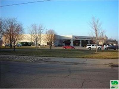 Commercial For Sale: 801 Lewis Blvd