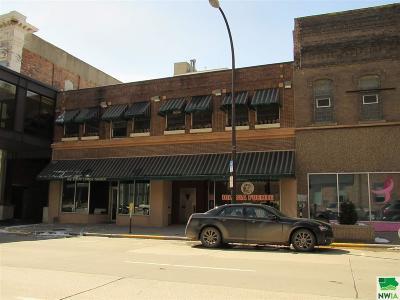 Commercial For Sale: 413 Nebraska #St