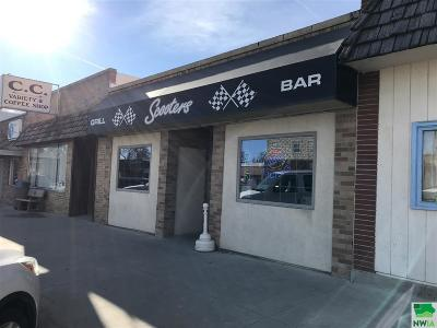 Commercial For Sale: 208 Main Street