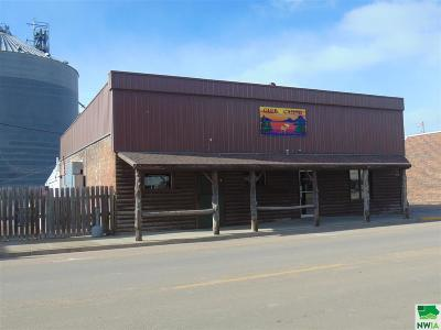 Commercial For Sale: 517 Driftwood St.