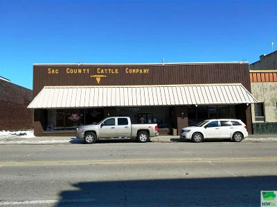 Commercial For Sale: 508 W Main Street