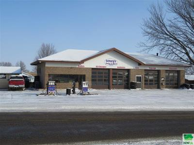 Commercial For Sale: 321 Hawkeye Avenue
