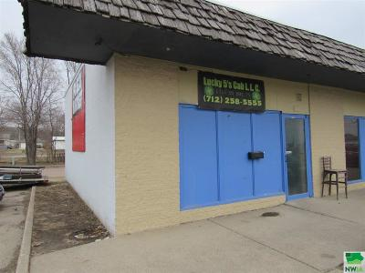 Commercial For Sale: 1710 N Hwy 75