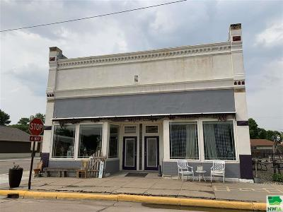 Commercial For Sale: 103 W Third St