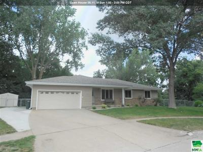 Single Family Home For Sale: 3301 Chalet Court