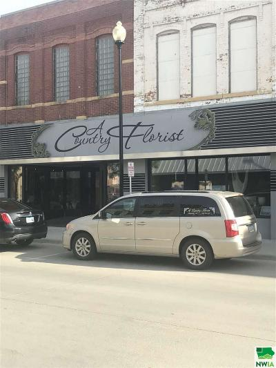 Commercial For Sale: 303 & 305 9th Street