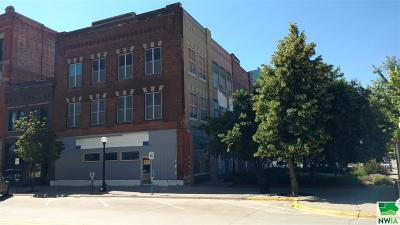 Commercial For Sale: 1004 4th