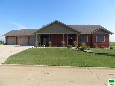Single Family Home For Sale: 1133 E Prairie