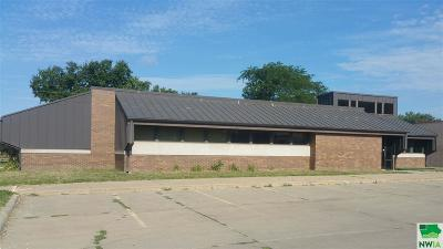 Commercial For Sale: 303 W 24th Street
