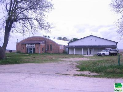Commercial For Sale: 106 County Road