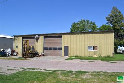 Commercial For Sale: 115 N 14th