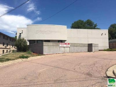 Commercial For Sale: 4409 Stone Ave