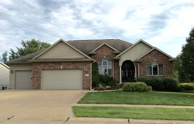 Lone Tree Single Family Home For Sale: 407 Yakish Ct