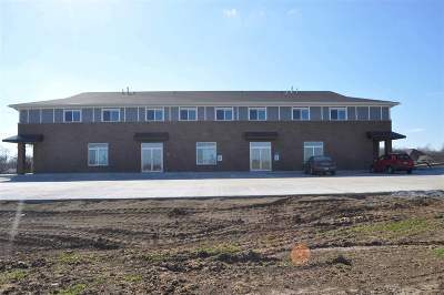 Tiffin Commercial For Sale: 513 State St.